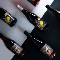 Vins natures Caaaaaaat Collection